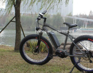 250W Brushless Motor Fat Electric Bicycle pictures & photos