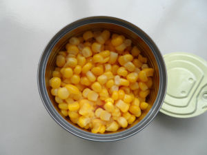 800g Canned Golden Sweet Kernel Corn with Best Price pictures & photos