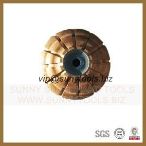 Abrasive Tools, Diamond Profiling Wheel pictures & photos