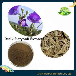 Radix Platycodi Extract, Balloonflower Extract, Platycodon Grandiflorum Extract pictures & photos