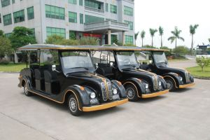 Wholesale 8 Seater Electric Classic Car pictures & photos