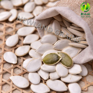 White Pumpkin Seeds From China with Top Quality 13mm 14mm 15mm for Roasted and Salted pictures & photos