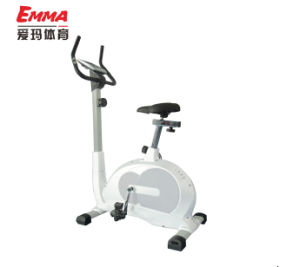 Indoor Use Fitness Magnetic Bike (M8004) pictures & photos
