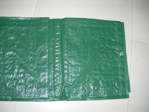 Hot Selling Great PE Tarpaulin. Reinforced Eyelets Tarpaulin