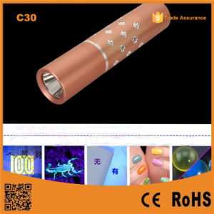 C30 Purple 365nm Flashlight Detection Fluorescence Detector Amber Scorpion Catch pictures & photos