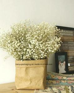 Washable Kraft Paper Storage Bag Toy Plant Pot for Christmas Decoration pictures & photos