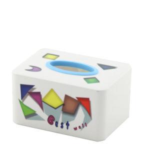 Rectangle Plastic Fashion Tissue Box (FF-5073-2)