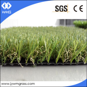 Compared Landscape Synthetic Turf Grass pictures & photos