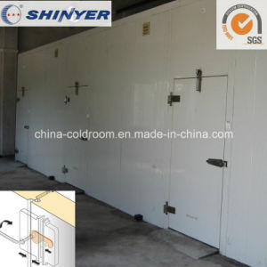 Modular Cold Room with Camlock Polyurethane PU Sandwich Panels pictures & photos