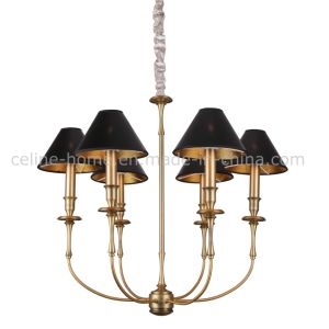 New Design Iron Chandelier Metal Frame Hanging Lighting (SL2096-6B) pictures & photos