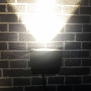 Competitive IP65 Outdoor Lighting LED Wall Lamp pictures & photos