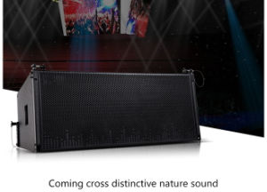 """Very High Quality Dual 12"""" Vera36 Outdoor Line Array PRO Auido Speaker pictures & photos"""