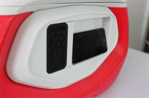 Hight Quality Mini Cooler Box with Bluetooth Speaker pictures & photos