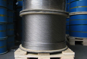 Stainless Steel Wire/Cutting Wire pictures & photos