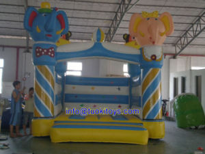Durable and Reliable Inflatable Bouncer for Children Park (A108)