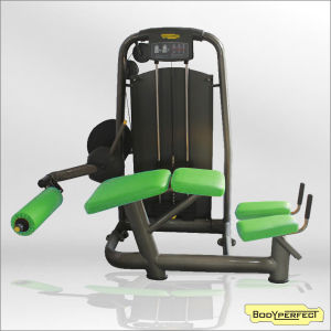 Exercise Equipment Prone Leg Curl (BFT-2049B) pictures & photos