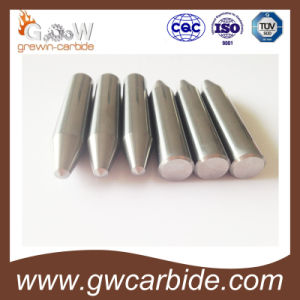 Customized for Tungsten Carbdie Tools According Your Requests pictures & photos