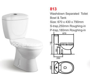 813 Economic Washdown Two Piece Ceramic Toilet pictures & photos