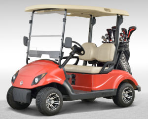 Hot Sale 2 Person Electric Mini Golf Cart EQ9022 pictures & photos