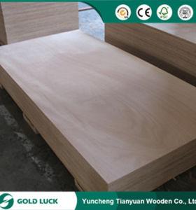 Poplar Core Building Film Melamine Concrete Formwork Plywood 1220X2440mm pictures & photos