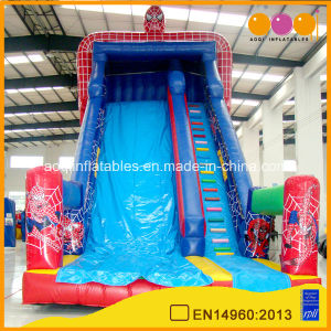 Inflatable Water High Slide for Sale (aq1138) pictures & photos