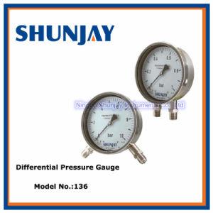Bellow Type Differential Pressure Gauge