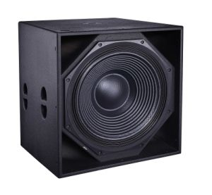 Cvr PRO 21′ High Power Sub Woofer Speaker Box pictures & photos