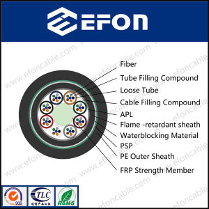 Outdoor Armour 2 4 6 8 12 24 Cores/Optical Cable pictures & photos