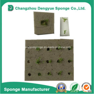 Hydroponics Farming Foam Soilless Culture Vegetable Seeds Tray Grow Sponge pictures & photos