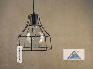 Filament Bulb Wire Pendant Lamp (C5006139) pictures & photos