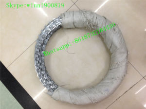 China Supplier High Quality Galvanized Razor Barbed Wire/Concertian Wire Coil/Concertina Razor pictures & photos