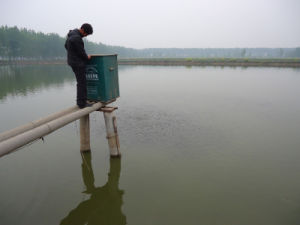 Dispense Feed Machine for Fish Pond pictures & photos
