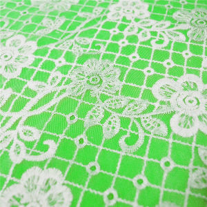Fashion Chemical Embroidery Polyester Fabric Lace (GF1015) pictures & photos