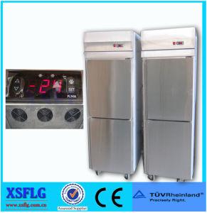 Double-Door Freezer/Stainless Steel Storage Refrigerator Freezer pictures & photos