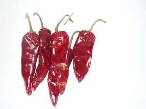 Yidu Chilli Jinta Chilli American Red Chilli in Grade a Quality