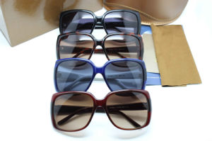 Hot Sale Acetate Sunglasses and Spectacle