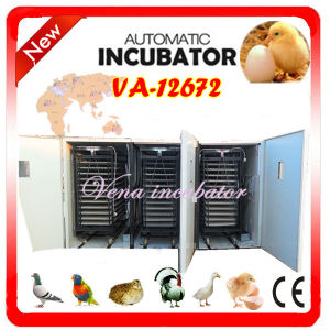 Industrial Fully Automatic Commercial Incubator (VA-12672) pictures & photos