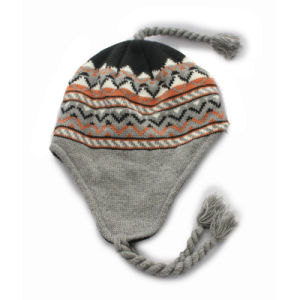 Winter Knitted Frozen Hat with Braid (GKA01-Q0085) pictures & photos