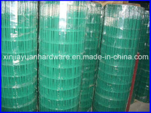 Hot DIP Galvanized /PVC Coated Welded Wire Mesh for Sale pictures & photos