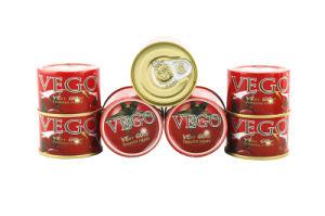 Tomato Paste for Iran 70g pictures & photos