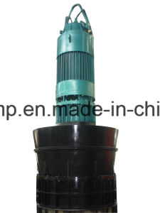 Submersible Axial Flow Pump pictures & photos