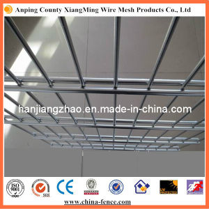 Galvanized Steel Welded Double Wire Mesh Fence (6/5/6) pictures & photos