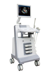Digital Ultrasound Diagnostic Instrument Color Doppler (AM-DCU2) pictures & photos