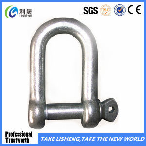 Factory Europe Type Large D Shackle pictures & photos