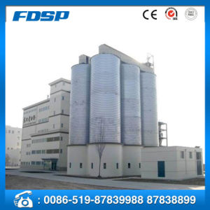 Long Term Storage Steel Raw Grain Silo pictures & photos