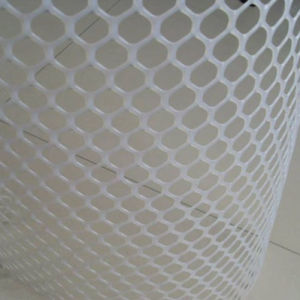 Hot Sale White Plastic Flat Mesh pictures & photos