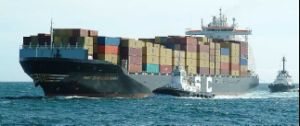 Shipping Agent From China to Palermo Trieste Logistics Forwarder pictures & photos