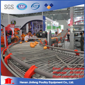 H Type Frame Automatic Layer Battery Equipment Cage pictures & photos
