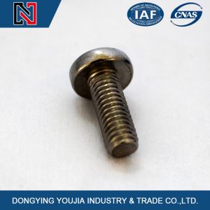 China High Quality Cross Recessed Pan Head Screw DIN7985 pictures & photos