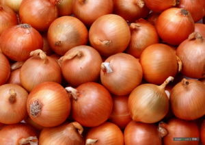 Golden Yellow Fresh Onion (5-7cm) pictures & photos